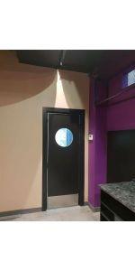 Маятниковая дверь модель 4 в интернет-магазине primadoors.by
