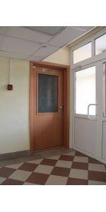 Дверь дымонепроницаемая ДВ3 Д ДЧ модель 2 в интернет-магазине primadoors.by